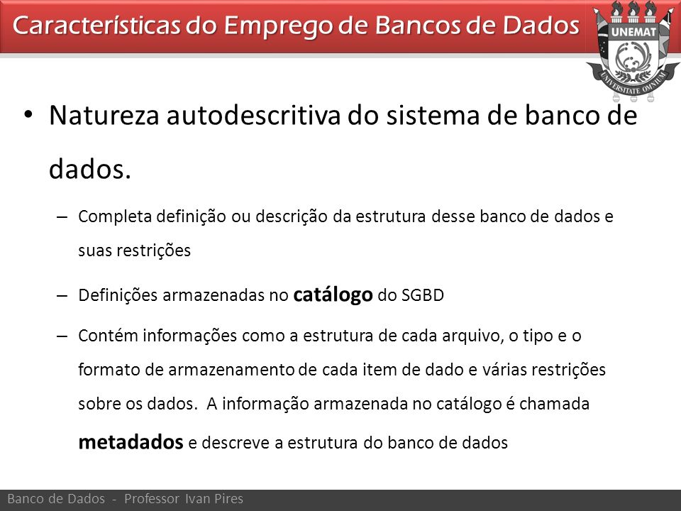 Natureza autodescritiva do sistema de banco de dados.