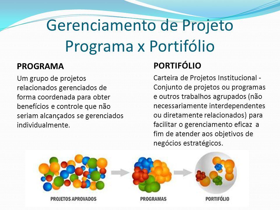 Gerenciamento de Projeto Programa x Portifólio