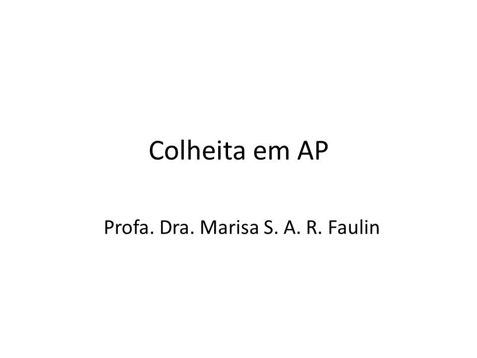 Profa. Dra. Marisa S. A. R. Faulin