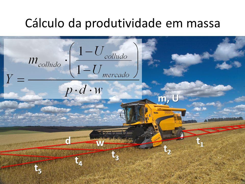 Cálculo da produtividade em massa