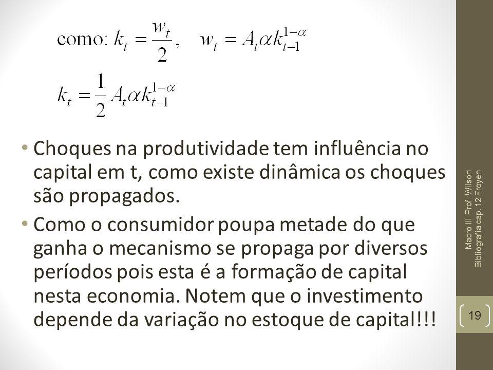 Choques na produtividade tem influência no capital em t, como existe dinâmica os choques são propagados.