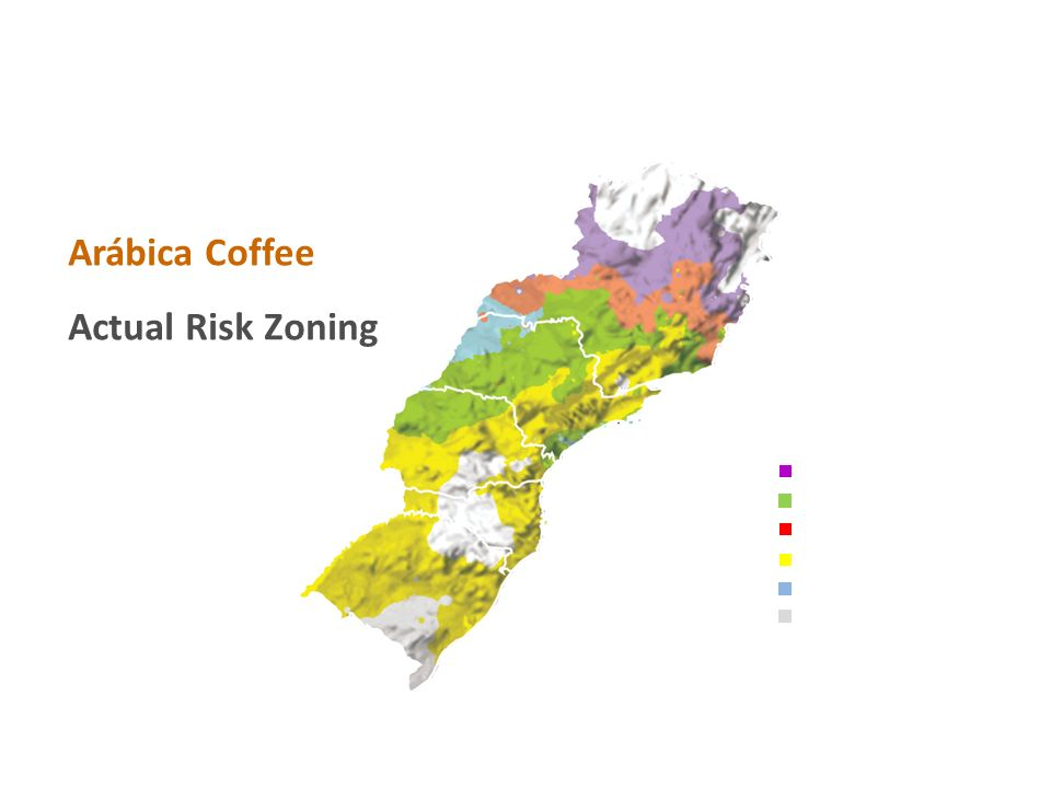 Arábica Coffee Actual Risk Zoning Irrigation Necessary