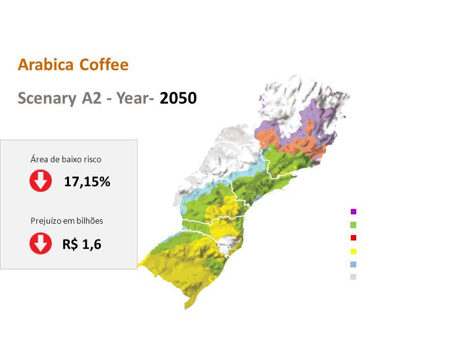 Arabica Coffee Scenary A2 - Year- 2050 17,15% R$ 1,6