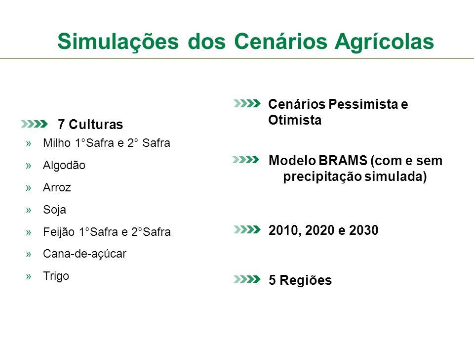 Simulações dos Cenários Agrícolas