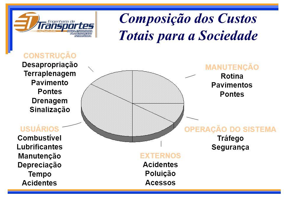 Composição dos Custos Totais para a Sociedade