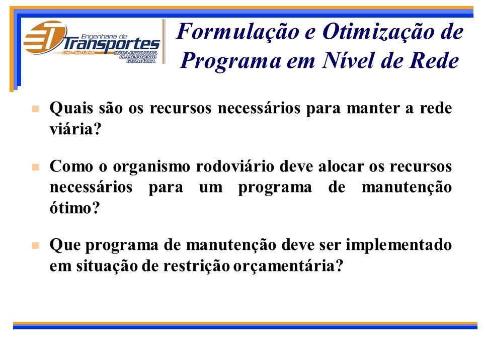 Formulação e Otimização de Programa em Nível de Rede