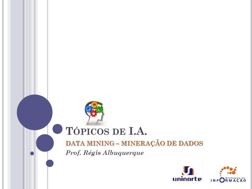 DATA MINING – MINERAÇÃO DE DADOS Prof. Régis Albuquerque