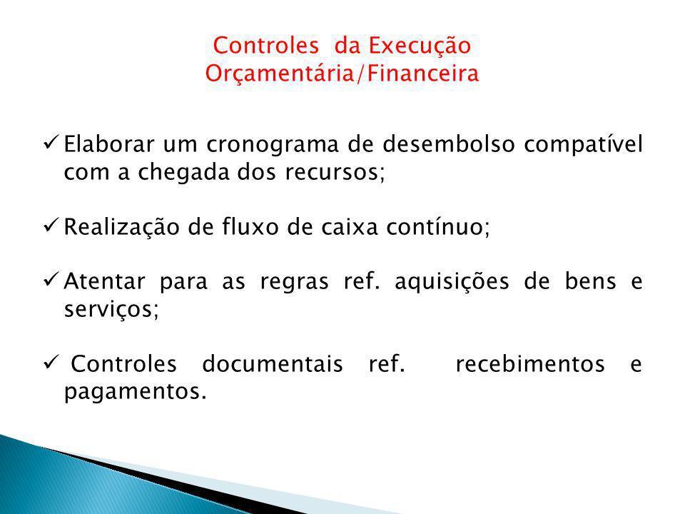 Controles da Execução Orçamentária/Financeira