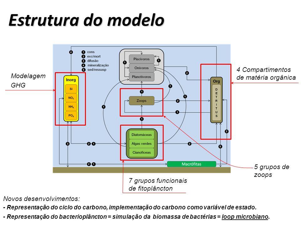 Estrutura do modelo 4 Compartimentos de matéria orgânica Modelagem GHG