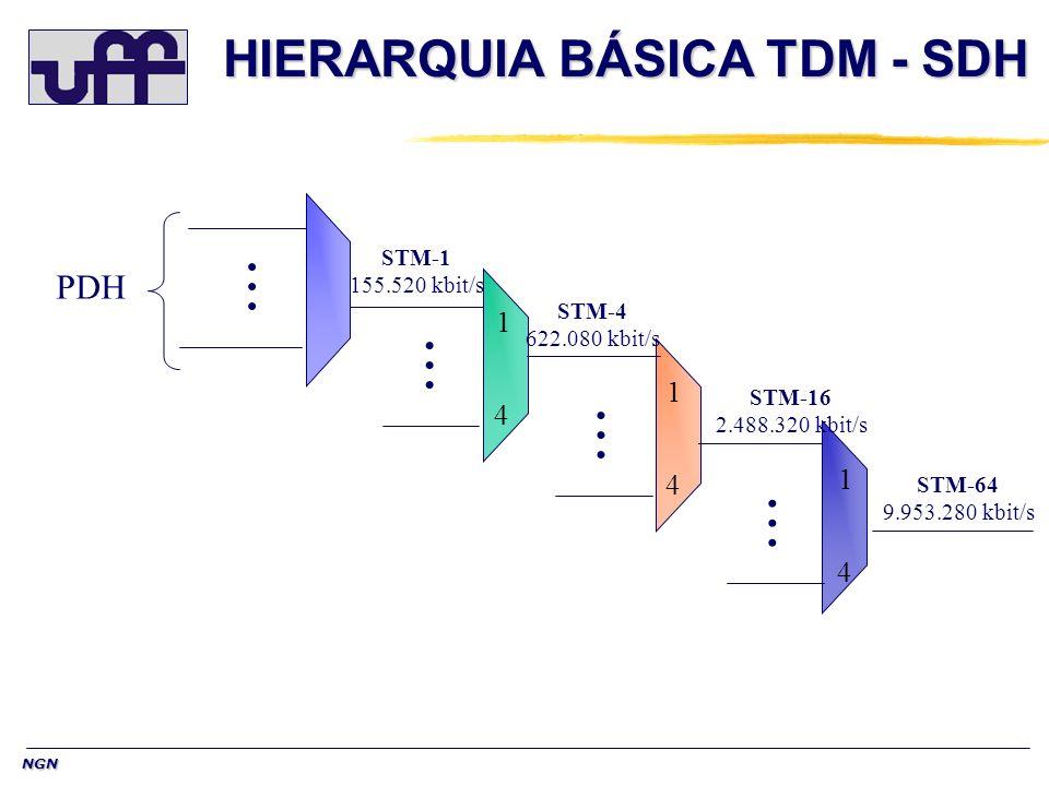 HIERARQUIA BÁSICA TDM - SDH