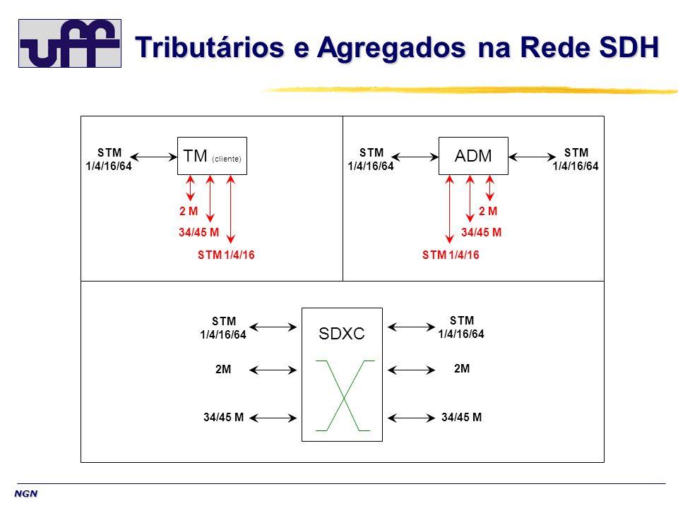 Tributários e Agregados na Rede SDH