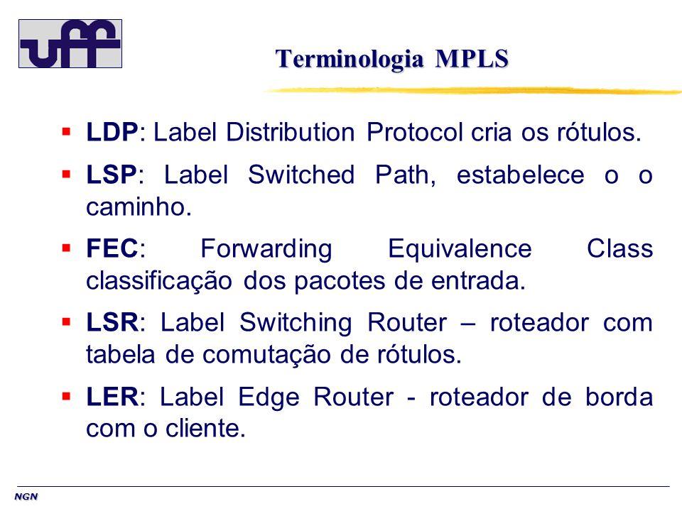 LDP: Label Distribution Protocol cria os rótulos.