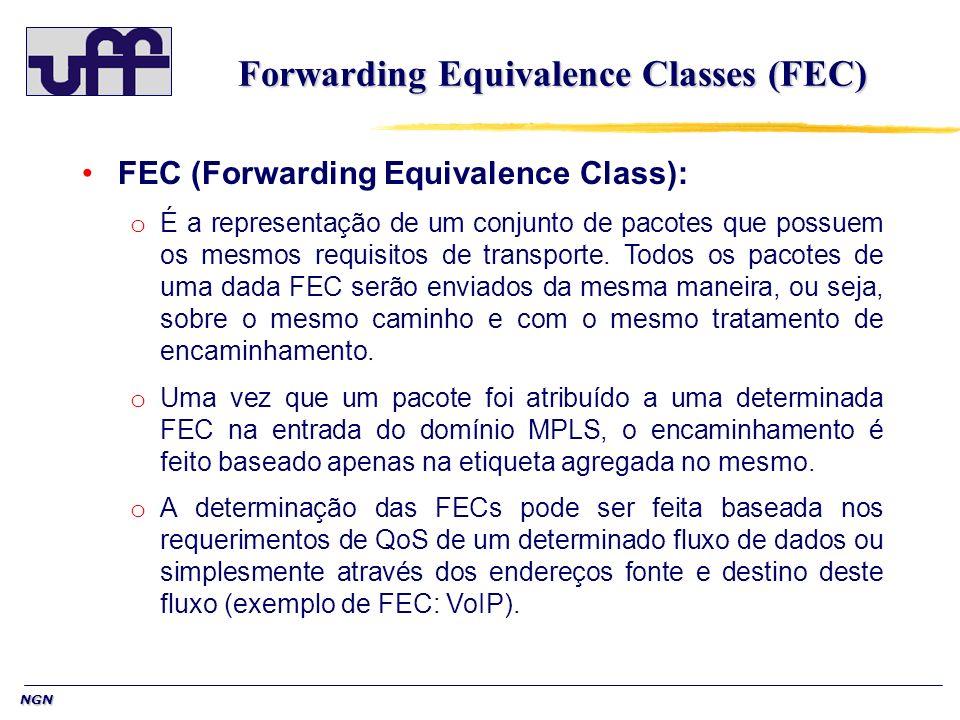 Forwarding Equivalence Classes (FEC)