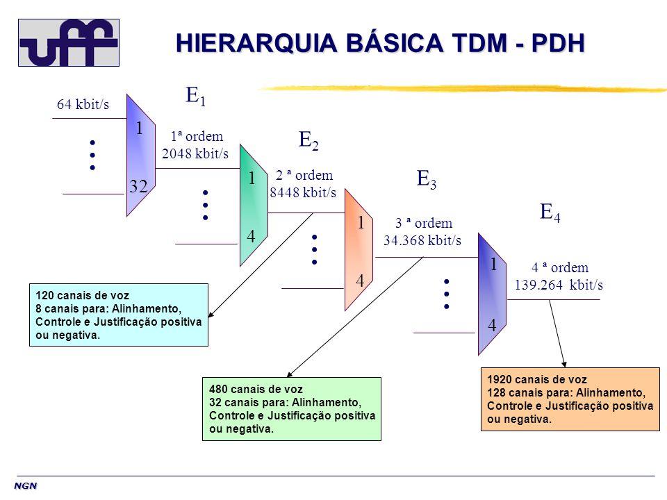 HIERARQUIA BÁSICA TDM - PDH