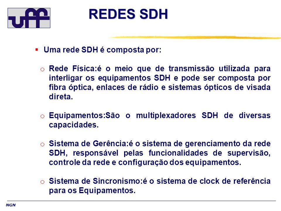 REDES SDH Uma rede SDH é composta por: