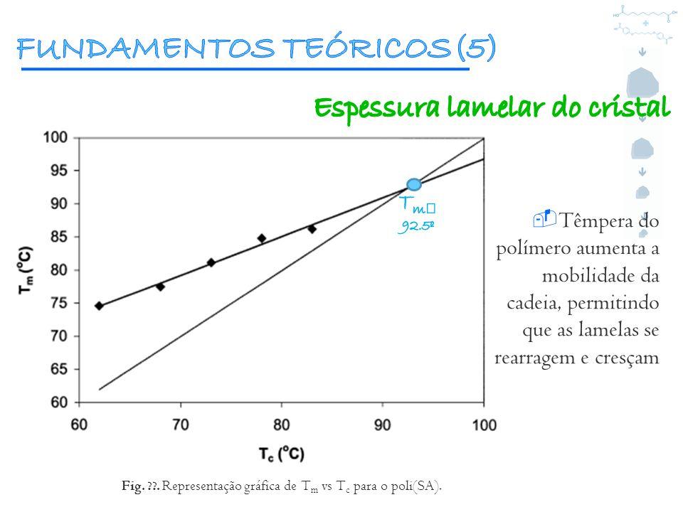 FUNDAMENTOS TEÓRICOS(5)