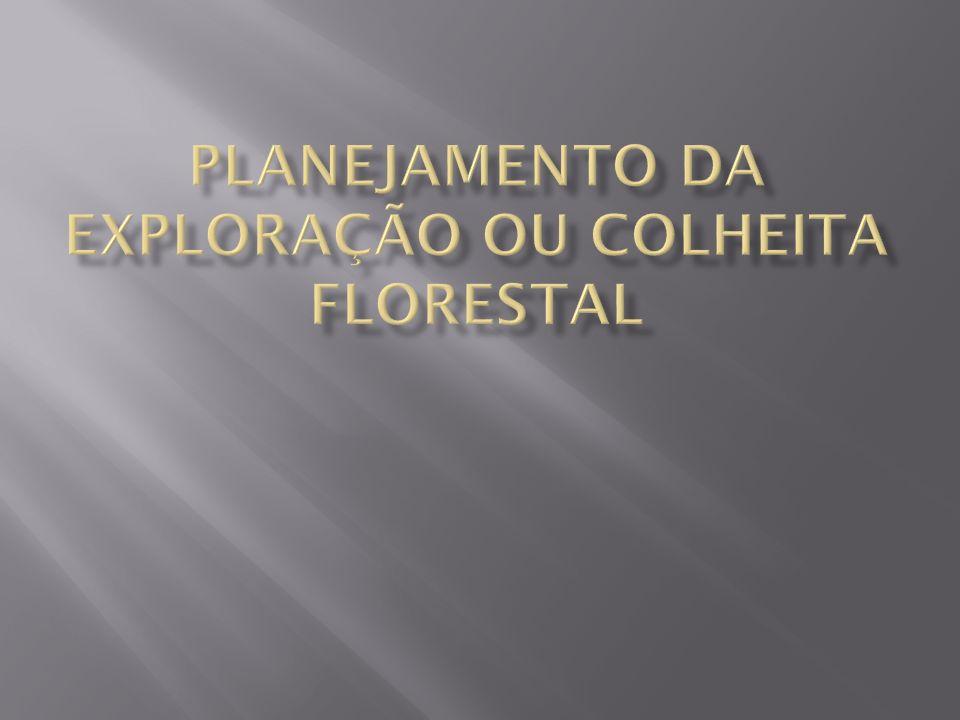 PLANEJAMENTO DA EXPLORAÇÃO OU COLHEITA FLORESTAL