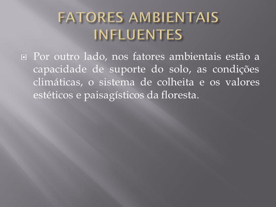 FATORES AMBIENTAIS INFLUENTES