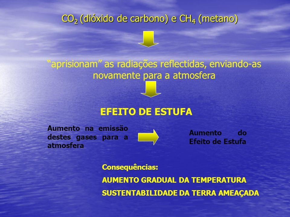 CO2 (dióxido de carbono) e CH4 (metano)