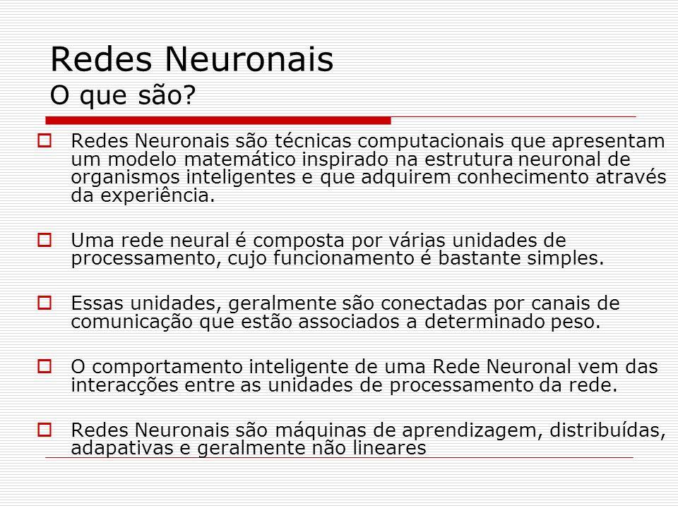 Redes Neuronais O que são