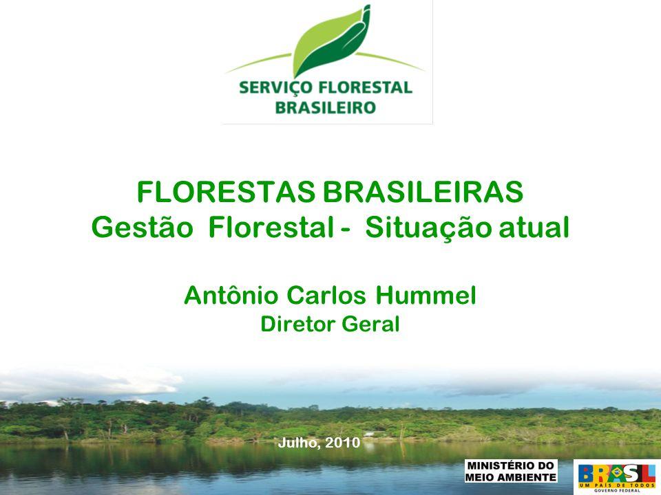 FLORESTAS BRASILEIRAS Gestão Florestal - Situação atual Antônio Carlos Hummel Diretor Geral
