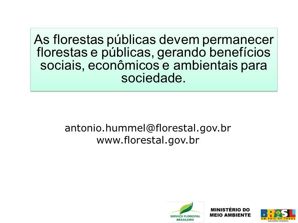 As florestas públicas devem permanecer florestas e públicas, gerando benefícios sociais, econômicos e ambientais para sociedade.