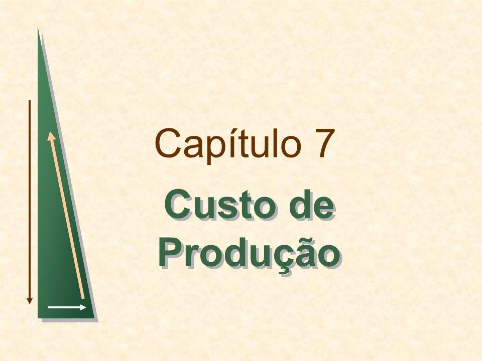 Capítulo 7 Custo de Produção 1