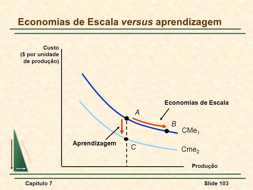 Economias de Escala versus aprendizagem