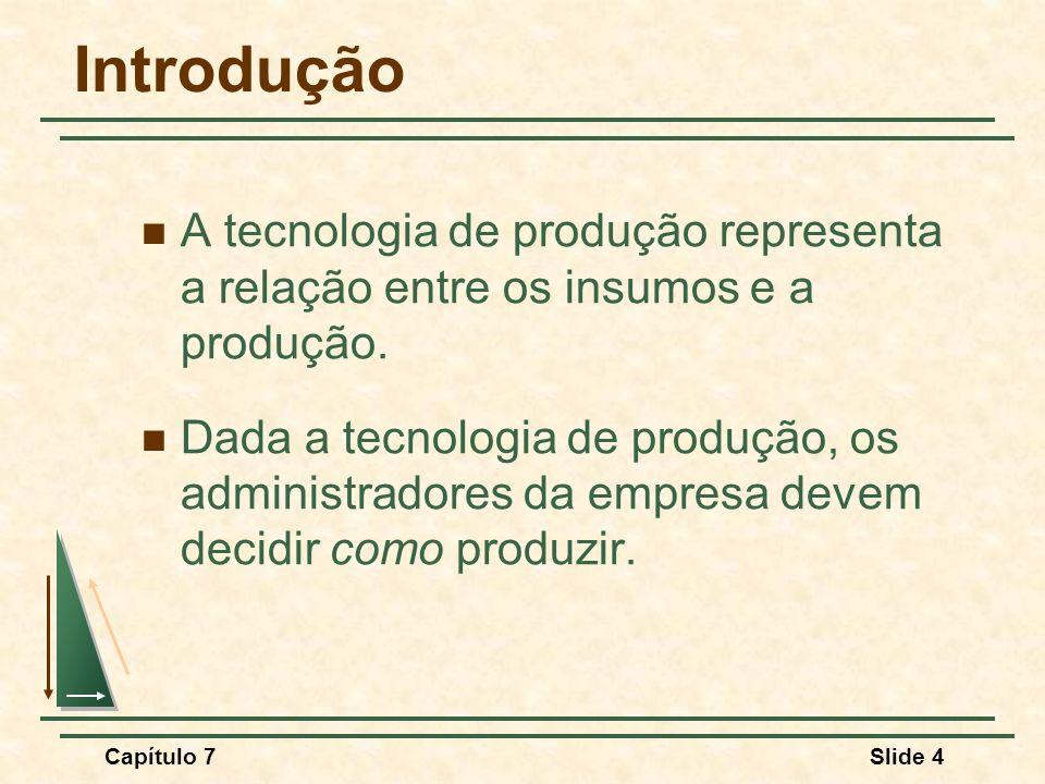 Introdução A tecnologia de produção representa a relação entre os insumos e a produção.