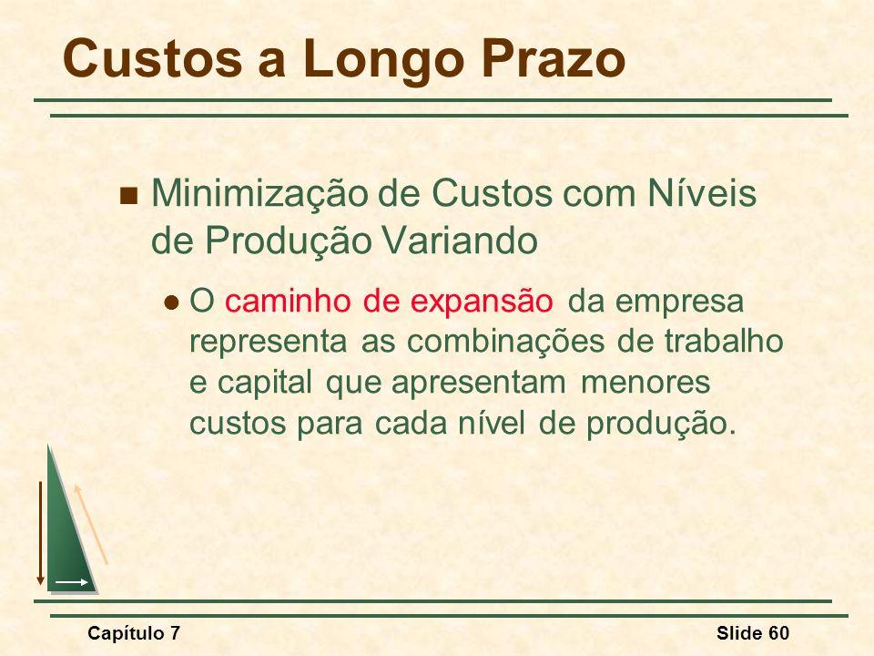 Custos a Longo Prazo Minimização de Custos com Níveis de Produção Variando.