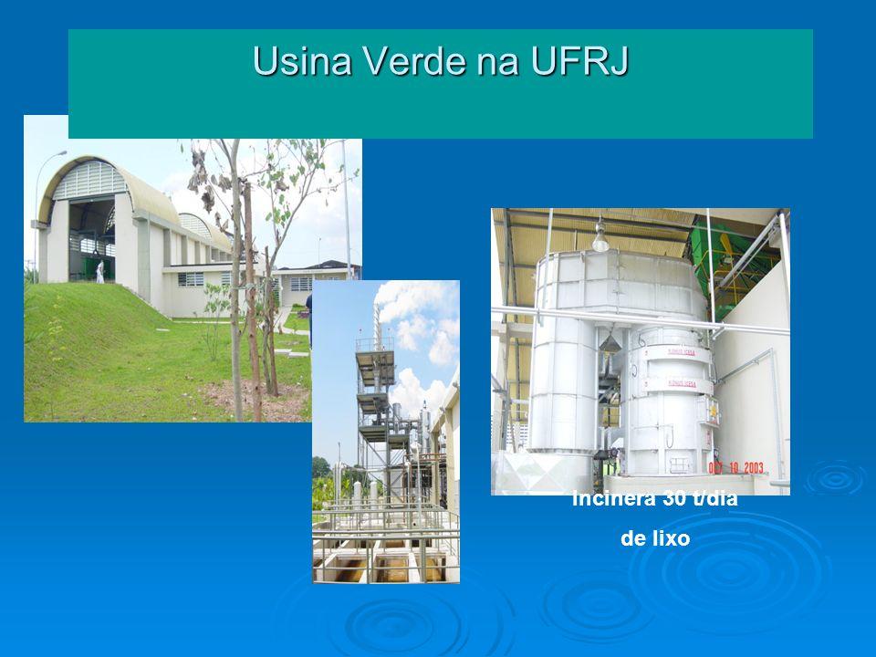 Usina Verde na UFRJ Incinera 30 t/dia de lixo