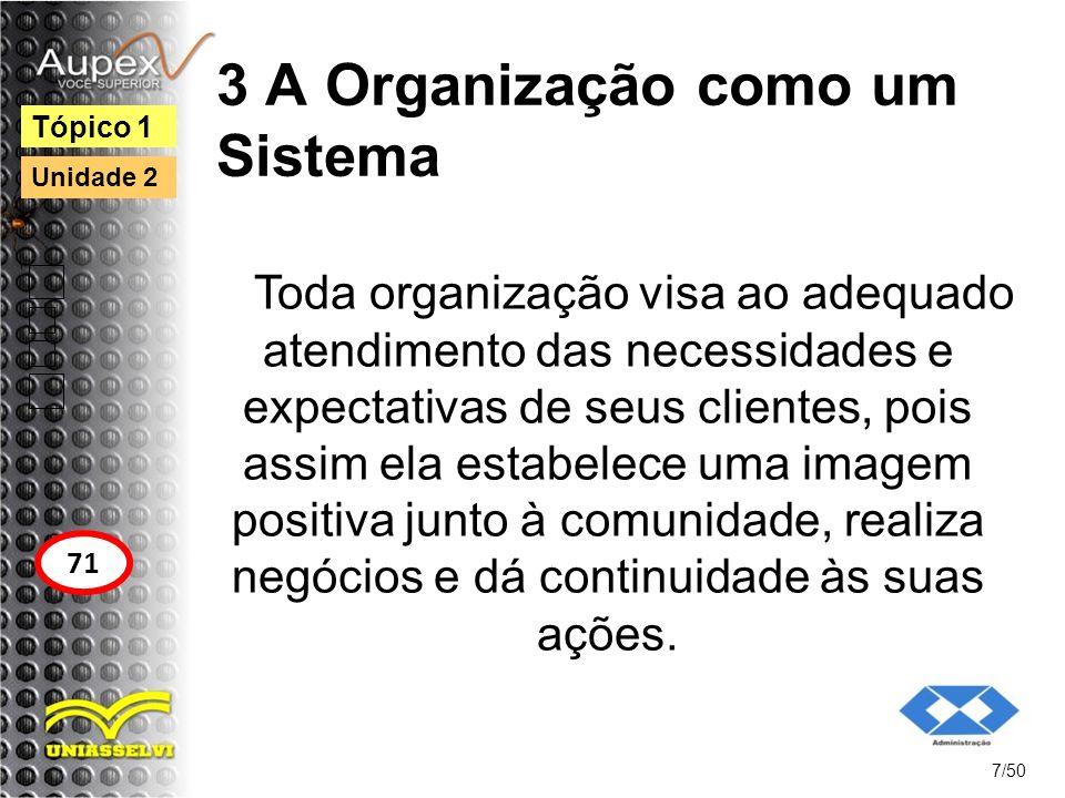 3 A Organização como um Sistema