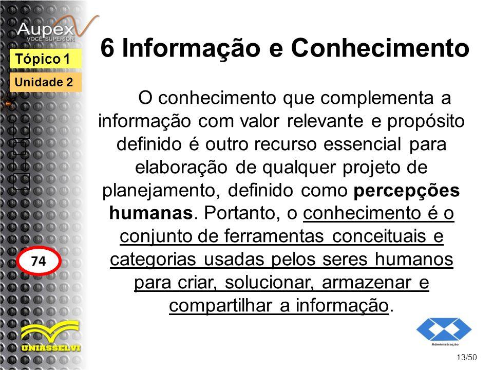 6 Informação e Conhecimento
