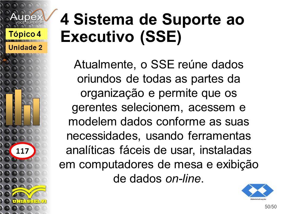 4 Sistema de Suporte ao Executivo (SSE)