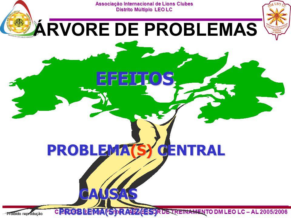 EFEITOS ÁRVORE DE PROBLEMAS PROBLEMA(S) CENTRAL CAUSAS