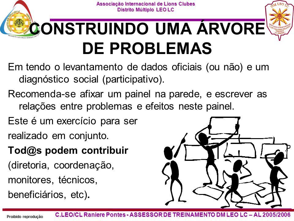 CONSTRUINDO UMA ÁRVORE DE PROBLEMAS