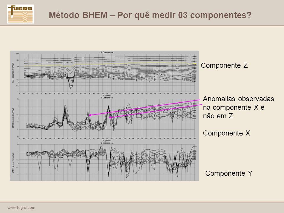Método BHEM – Por quê medir 03 componentes