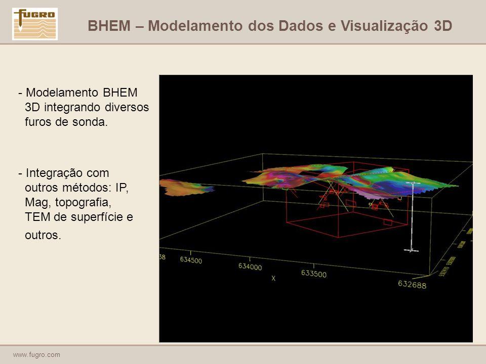 BHEM – Modelamento dos Dados e Visualização 3D