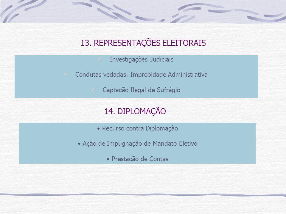 13. REPRESENTAÇÕES ELEITORAIS