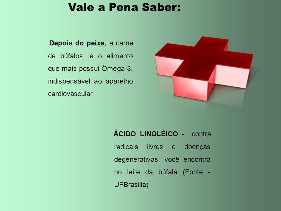 Vale a Pena Saber: Depois do peixe, a carne de búfalos, é o alimento que mais possui Ômega 3, indispensável ao aparelho cardiovascular.