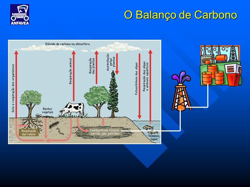 O Balanço de Carbono