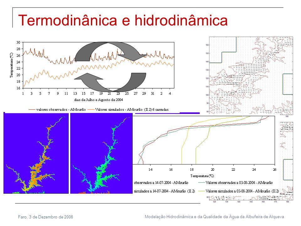 Termodinânica e hidrodinâmica