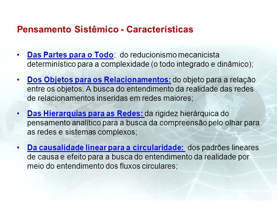 Pensamento Sistêmico - Características