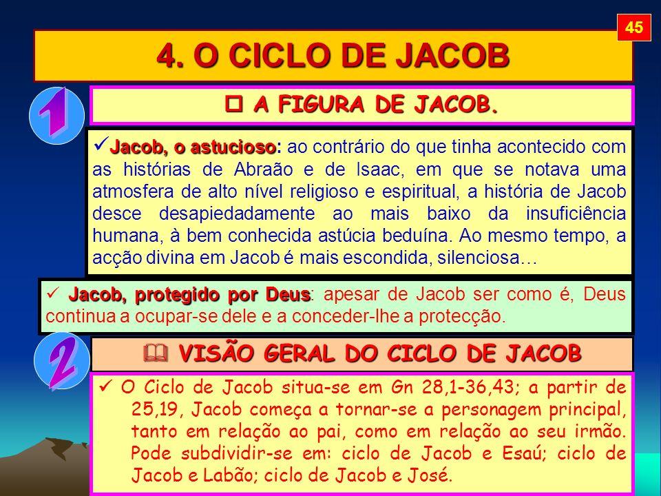 VISÃO GERAL DO CICLO DE JACOB