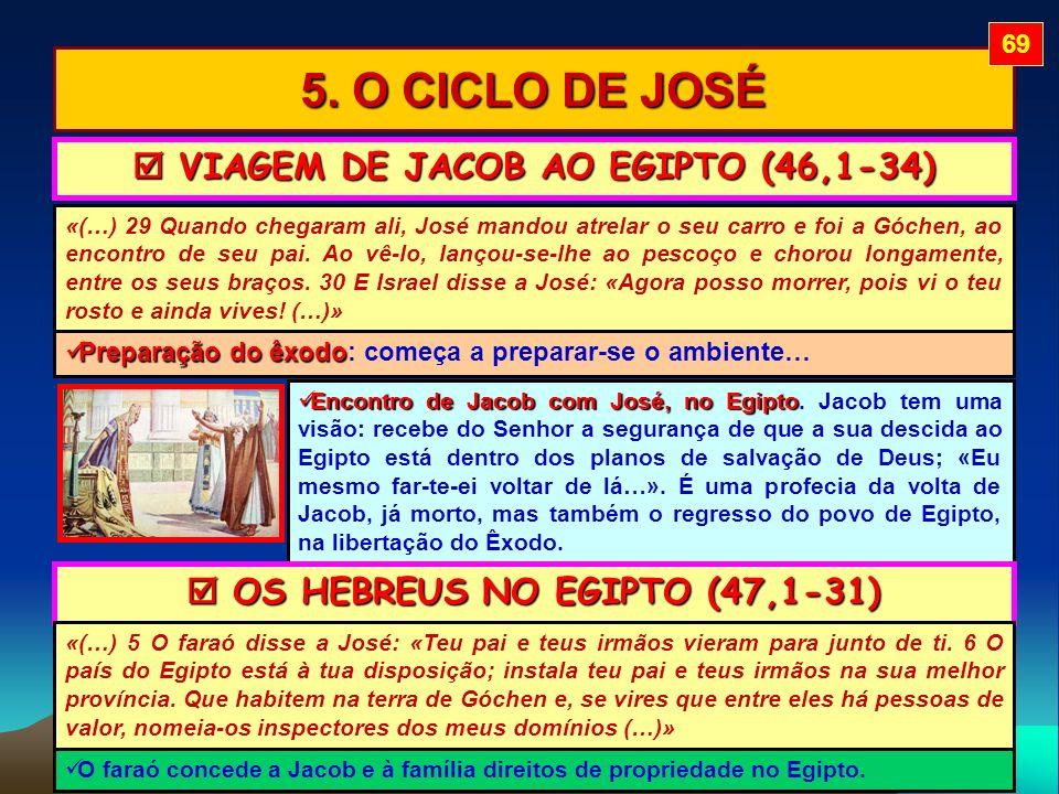  VIAGEM DE JACOB AO EGIPTO (46,1-34)  OS HEBREUS NO EGIPTO (47,1-31)