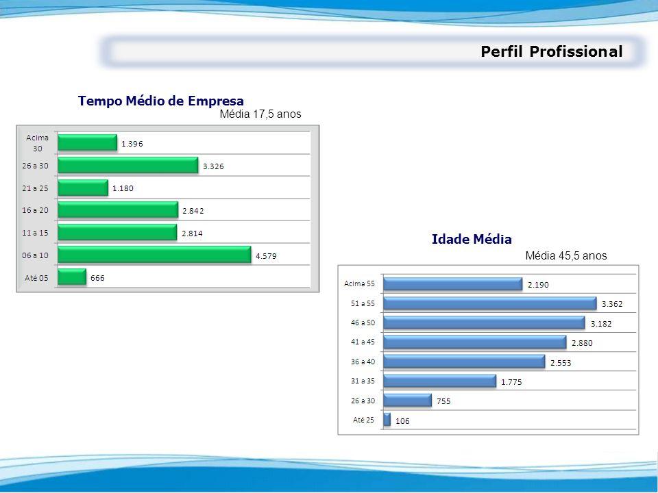 Perfil Profissional Tempo Médio de Empresa Idade Média Média 17,5 anos