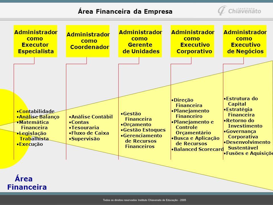 Financeira Área Financeira da Empresa Administrador como Executor