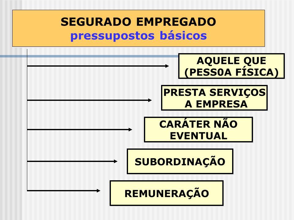 SEGURADO EMPREGADO pressupostos básicos