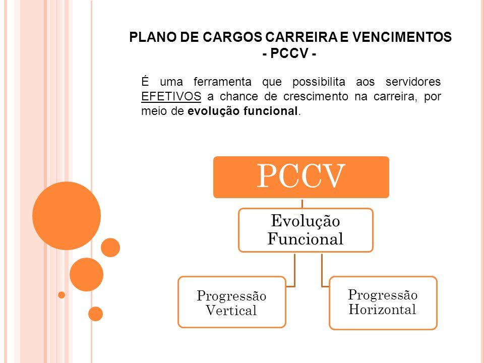 PLANO DE CARGOS CARREIRA E VENCIMENTOS