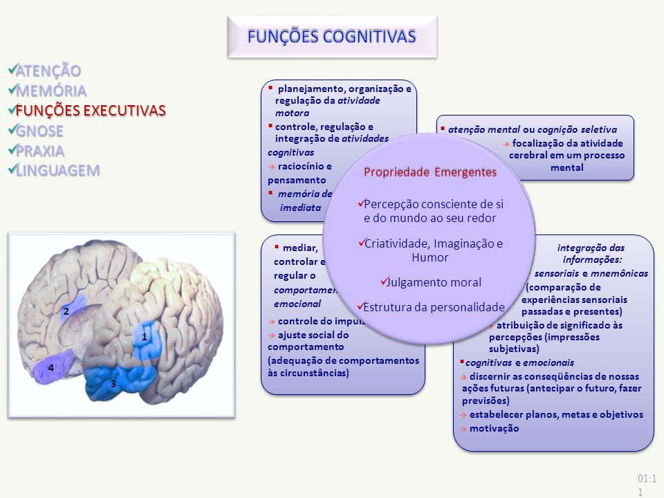 FUNÇÕES COGNITIVAS ATENÇÃO MEMÓRIA FUNÇÕES EXECUTIVAS GNOSE PRAXIA